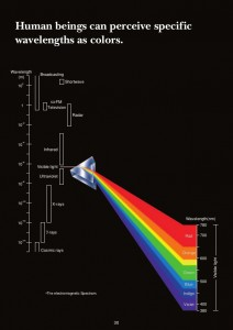hunmanbeings can perceive specific wavelengths as colors